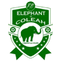 elephants coleah